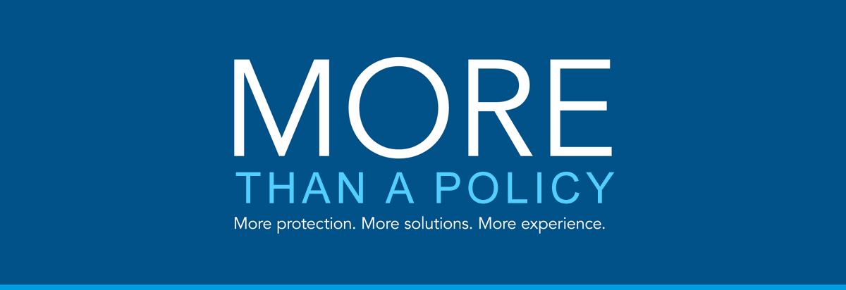 """Blue rectangle with text """"More than a policy. More protection. More solutions. More experience""""."""