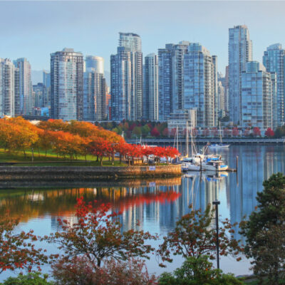 Blog image for Opinion or insurance? The future of B.C.'s commercial sector