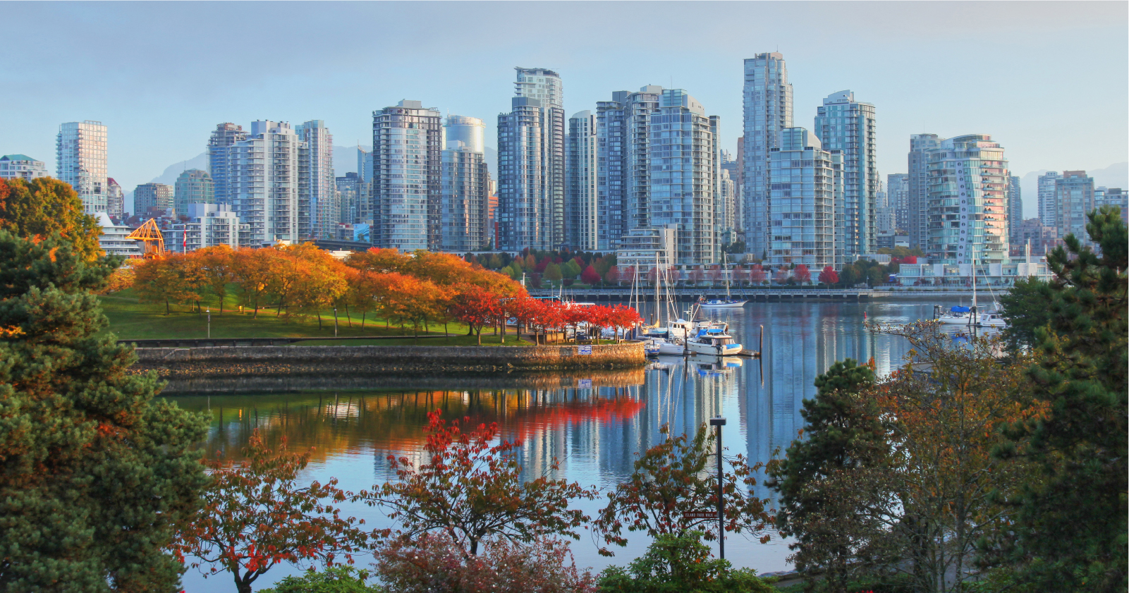 photo of downtown Vancouver with trees in the foreground